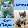 Питомник Duke Cleangorse